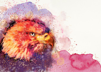 Watercolor eagle bacground.