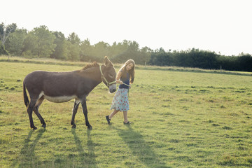 Full length of little girl walking with donkey on grassy field during sunny day
