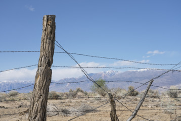 Rustic barbed wire fence