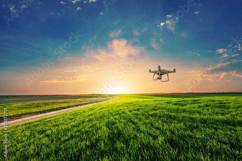 Wall mural drone quad copter on green corn field