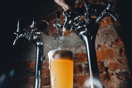 Close-up of barman pours light cold filtered beer in glass beaker.
