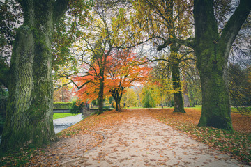 Tree lined avenue in autumn in Lichtentaler Allee park on the River Oos in Baden-Baden, Germany with colorful fall foliage on the trees