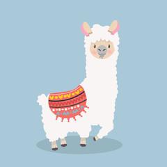 Cute  lama alpaca  fluffy