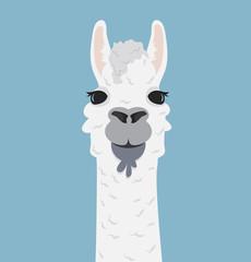 Alpaca lama portrait Vector Illustration