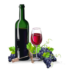 bottle of wine with bunches of grapes