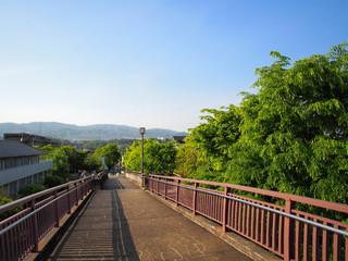 On the Land Bridge, Osaka.