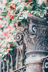 Romantic roses  garden. Detail of an antique column with a pink rose on the top. Selective focus