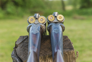 Hunting season concept: two beautiful hunting rifles with cartridges on back view