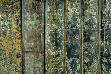 Back cover of  six worn leather textured books in a row.