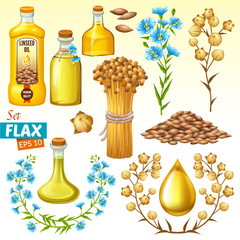 Set linseed oil, flax seeds and flowers. Isolated vector illustration.