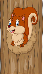 Cartoon squirrel in the tree hole