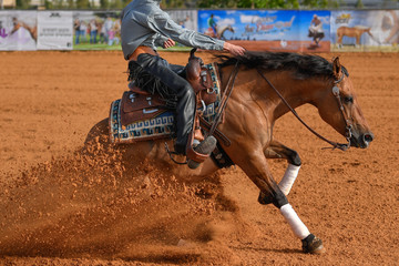 Poster de jardin Equitation The side view of a rider in jeans, cowboy chaps and checkered shirt on a reining horse slides to a stop in the red clay an arena.