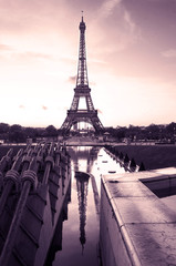 Eiffel tower. paris. france. Sweet tones photography.