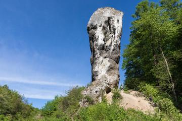 Fototapeta Limestone monadnock, rock called