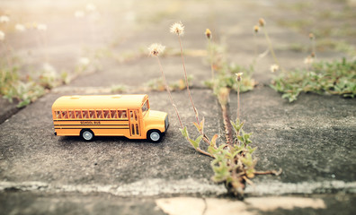 Yellow school bus toy model on country road.Vintage color style for education concept background.