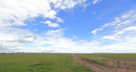 Masai Mara Wallpapers