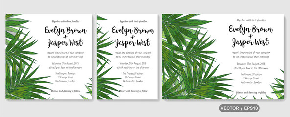 Wedding invite, invitation rsvp thank you card vector floral greenery design: tropical palm leaf howea (kentia) branch green, foliage herbs elegant frame border