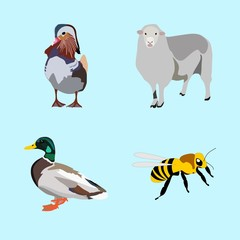 icons about Animal with outdoor, zoo, desing, flight and vintage