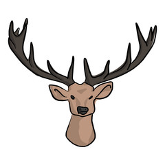 Deer head with beautiful horns vector illustration sketch doodle hand drawn with black lines isolated on white background