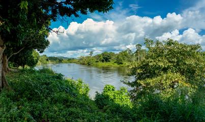 Amazon River Scene in Brazil