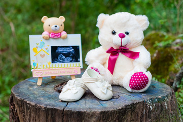 Bear portrait picture with pregnancy x-ray image, baby bear and baby shoe