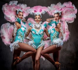 Group of happy professional dancers in sumptuous carnival feather suits.