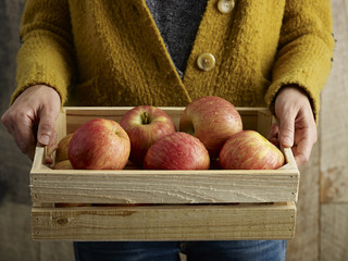 Person holding crate of Fuji apples