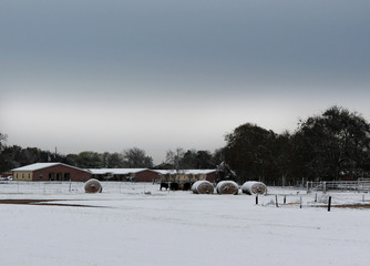 Bails of Hay in the Snow