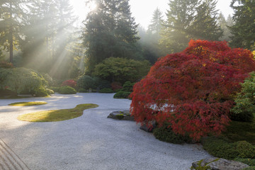 Sun Rays over Japanese Flat Sand Garden in Autumn