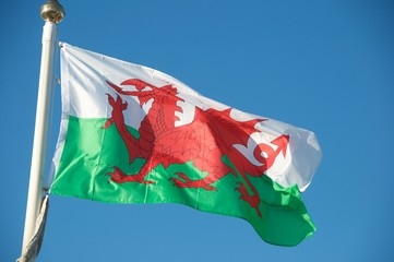 Fototapeta flaga Walii na tle niebieskiego nieba obraz