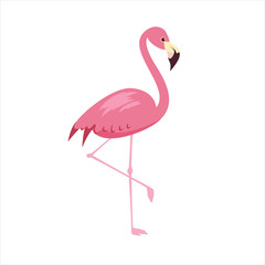 Pink flamingo vector illustration isolated on white background. Cartoon style