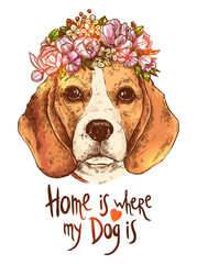 Portrait Of Beagle Dog With Flower Floral Wreath And Quote About Dog and Home. Sketch Hand Drawn Color Style