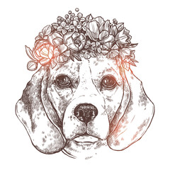 Portrait Of Beagle Dog With Flower Floral Wreath. Sketch Hand Drawn Monochrome Style