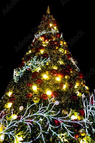 nice christmas light with night sky