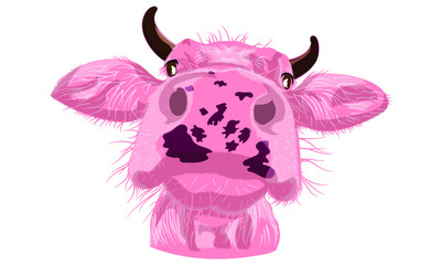 Cow pink funny