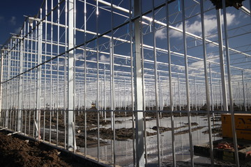 Construction of a new greenhouse for roses in Moerkapelle in the Netherlands