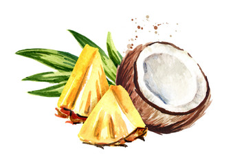 Coconut with sliced pineapple. Pina colada elements. Watercolor hand drawn illustration  isolated on white background