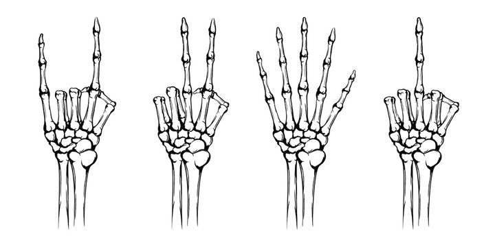 Hands of the skeleton with different gestures. Rock and peace symbol, fuck you, symbol. Hand drawn human hands with bones isolated on white background. Vintage grunge technique