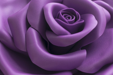 Close up image of beautiful purple rose