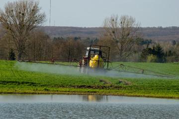 Farmer on tractor spraying green wheat field