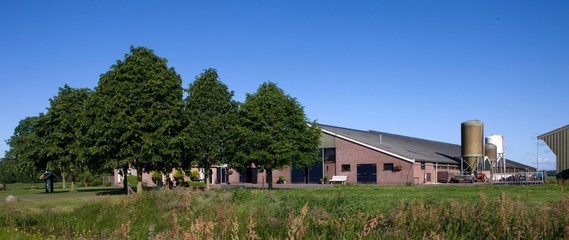 Modern Dutch farm. Netherlands. Rural