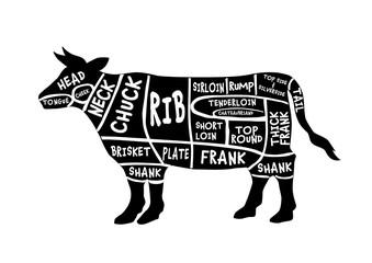 牛部位英語