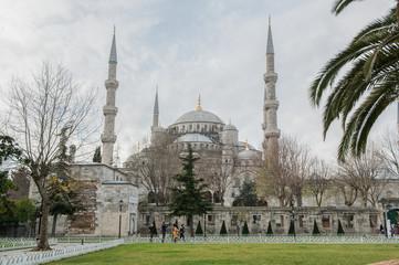 Istanbul, Turquie, rue et mosquée bleue