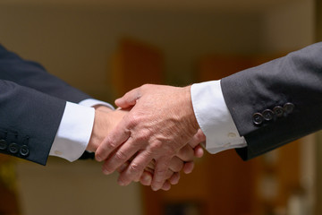 Two professional men shaking hands