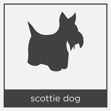 scottie dog icon isolated on white background