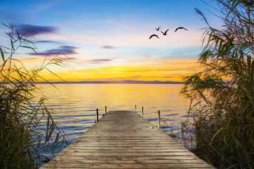 embarcadero entre las cañas del lago