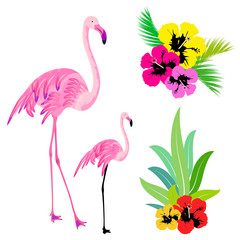 beautiful tropical palm leaves and flamingo,on a white