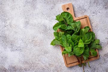 Bunch of fresh mint on cutting board