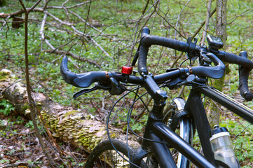 two bikes in the forest, Cycling with friends, Cycling in the forest