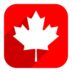 Canadian maple leaf on square shape in flat style